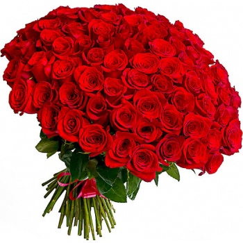 """101 красная роза """"Большая любовь"""". annetflowers.com.ua. Купить 101 розу в Киеве"""