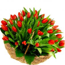 """101 красный тюльпан в корзине """"Мануэль"""""""