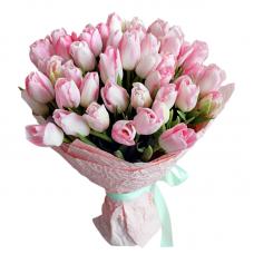 """31 розовый тюльпан """"Сама нежность"""""""
