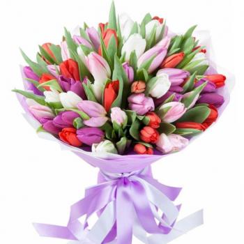 """51 тюльпан """"Даниэла"""". annetflowers.com.ua. Купить большой букет тюльпанов микс"""