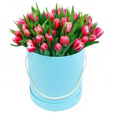 """45 розовых тюльпанов в коробке """"Пьер"""""""