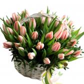 """51 тюльпан в корзине """"Весенняя фантазия"""""""