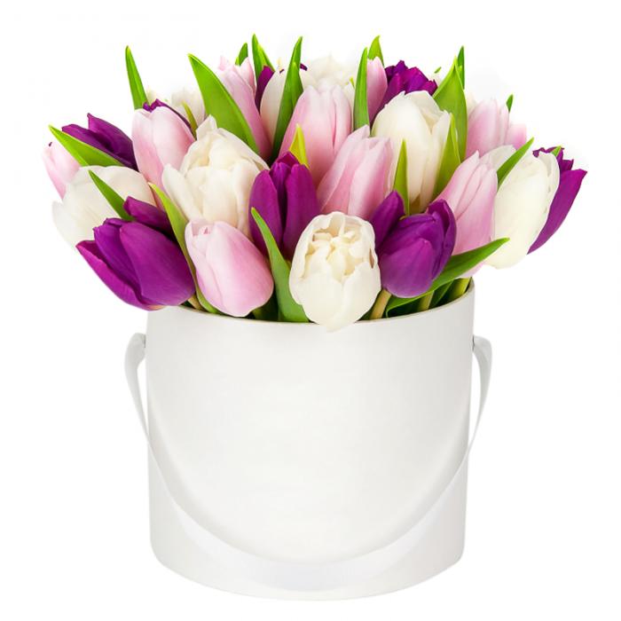Заказать Букет 25 тюльпанов в шляпной коробке в Киеве