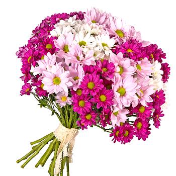 """Букет хризантем """"Вечность"""". annetflowers.com.ua. Букет разноцветных хризантем"""