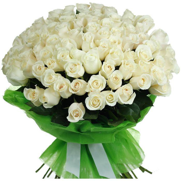 Большой букет белых роз с пожеланиями