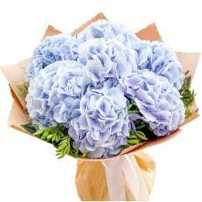 Букет з 7 синіх гортензій