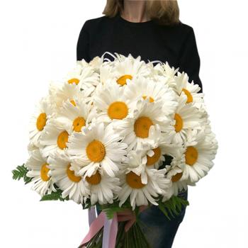 """Букет ромашек """"Летние лучики"""". annetflowers.com.ua. Купить ромашки в Киеве"""