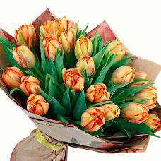 """Букет 25 тюльпанів """"Франсиско"""""""