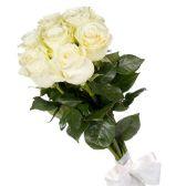 7 белых Голландских роз