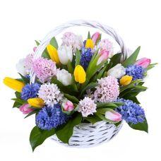 """Корзина из тюльпанов и гиацинтов  микс """"Муза весны"""""""