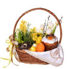 https://www.annetflowers.com.ua/image/cache/catalog/pasha/IMG_0349-228x228.jpg