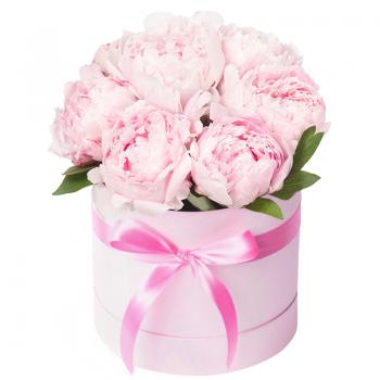 """Пионы в шляпной коробке """"Инэс"""". annetflowers.com.ua. Купить букет розовых пионов в шляпной коробке"""
