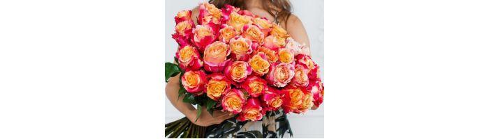 Голландские розы (Эквадор)