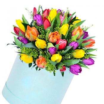 """Тюльпаны в коробке """"Вильям"""". annetflowers.com.ua. Купить букет тюльпанов микс недорого"""